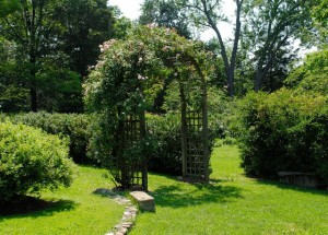 Arbor at Hollin Hall
